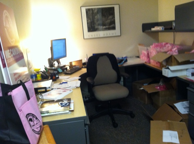 "My office was a ""Pink Army"" war zone..."